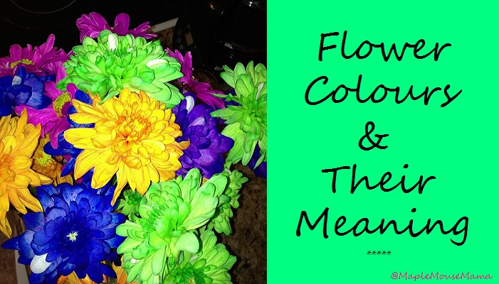 The Meaning Of The Color Of Roses  Sensational Color