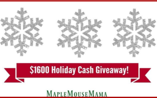 Let It Snow With The $1600US Holiday Cash #Giveaway! Open Worldwide! 12/22