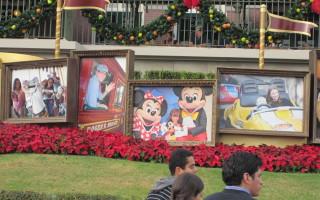 Destination Disney: Most Favorite Park