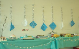 #Frozen Inspired Decorations To Show Our DisneySide! (Part One)