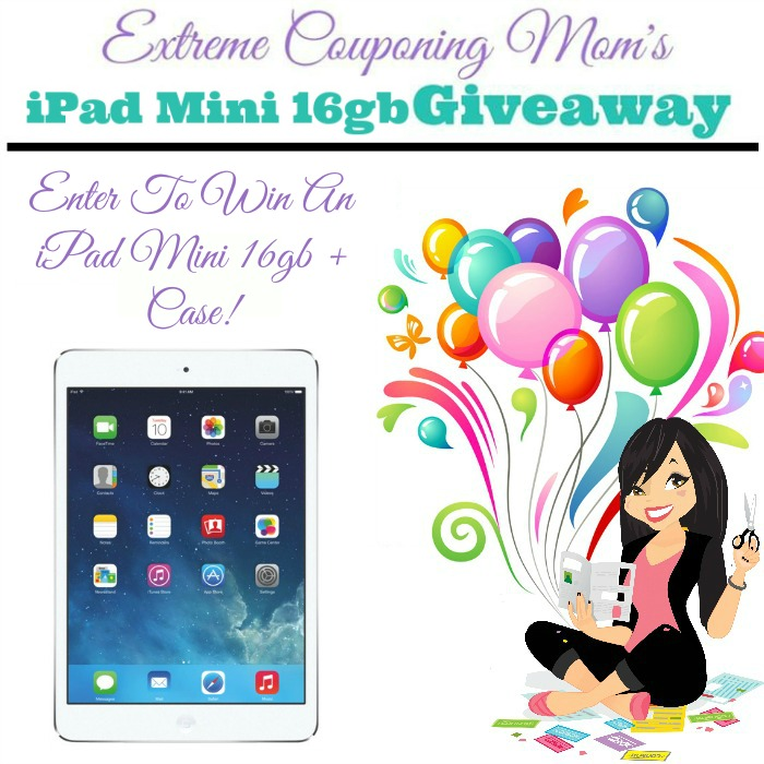 how to get email on ipad mini