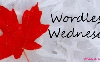 Wordless Wednesday: January 27th, 2016