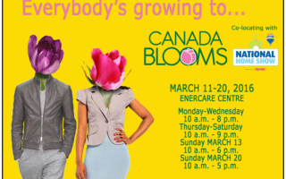 Everyone is Growing to @CanadaBlooms in Toronto; Are You? #Giveaway 3/6 CAN