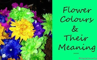meaning of flower colours