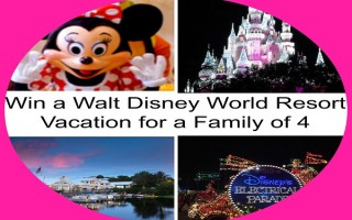 Enter to #Win a Walt #Disney World Trip for Four!! #Giveaway Open to CAN/US, ends 5/20