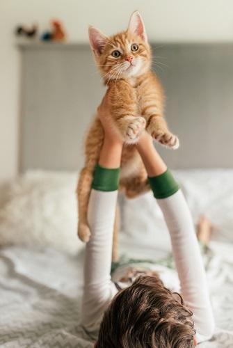 find-a-pet-sitter