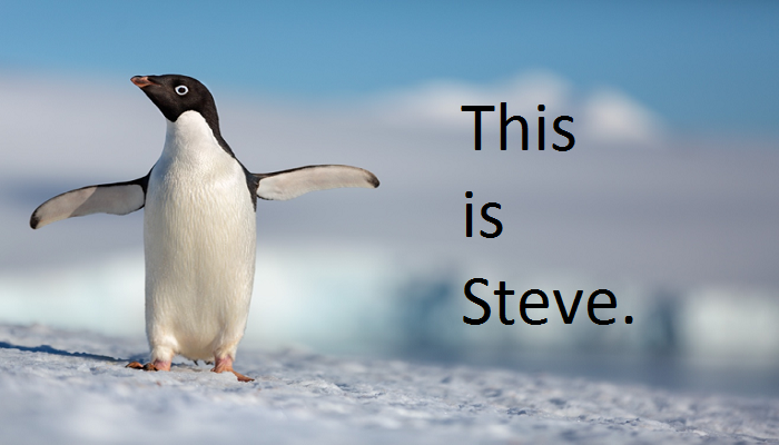 "Sneak Peek At Disneynature's ""Penguins"""